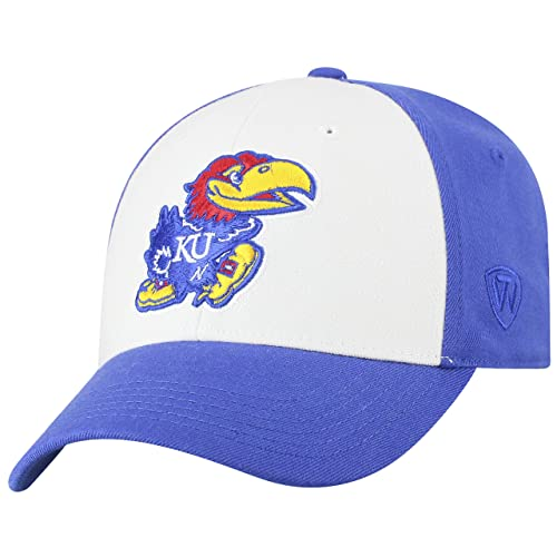 online retailer cf36d 8f41f Top of the World NCAA-Premium Collection Retro 2-Tone Fitted Hat Cap