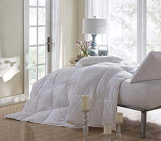 WENERSI All-Season Down Alternative Comforter - Luxury Soft 100% Plush Mircofiber Comforter,White Queen Size