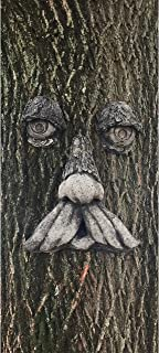 Concrete Collective Mountain Man Tree Face (Weathered)