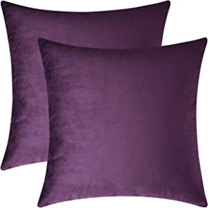 Mixhug Set of 2 Cozy Velvet Square Decorative Throw Pillow Covers for Couch and Bed, Purple, 18 x 18 Inches