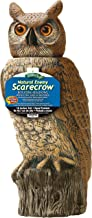 scare owl with rotating head
