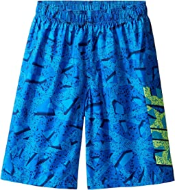 "Granite 9"" Volley Shorts (Big Kids)"
