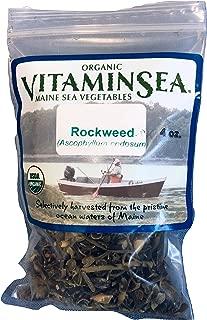 VITAMINSEA Organic Norwegian Kelp Flakes - Rockweed Seaweed 4 oz / 112 G Maine Coast Raw - Wild Atlantic Sea Vegetables - Vegan - Kosher Certified - DIY Furikake For Keto - Dr. Sebi Diets (RF4)