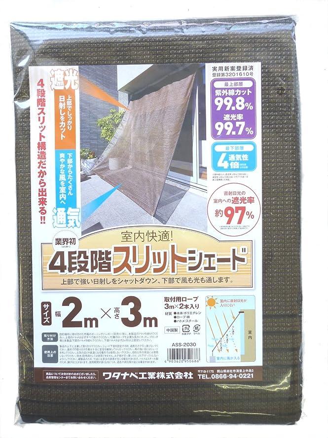 岩小切手普通のオーニングスリッドシェード  2m×3m