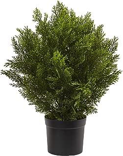 Nearly Natural 6880 2' Cedar Artificial Bush (Indoor/Outdoor), Green
