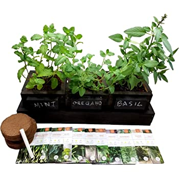 FATPLANTS Indoor Herb Garden: Handmade Decorative Cedar Triple Planter Box with Drainage Tray, 10 Varieties of Seeds, Soil, and Chalk