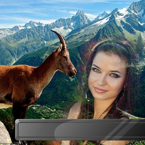 Marcos de fotos de animales salvajes