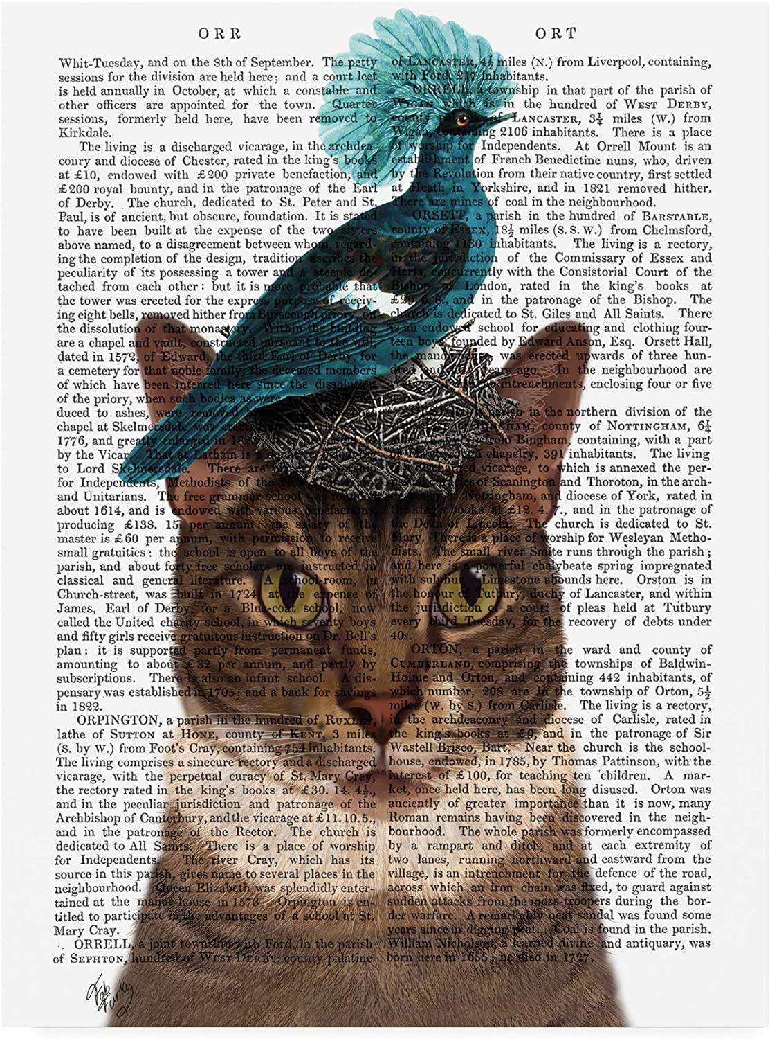 Trademark Fine Art Cat with Nest and bluee Bird by Fab Funky, 14x19