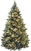 National Tree 7.5 Foot Carolina Pine Tree with Flocked Cones and 750 Clear Lights, Hinged..