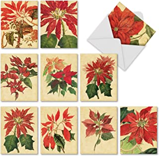 Best poinsettia christmas cards Reviews