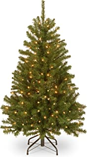 National Tree 4 Foot North Valley Spruce Tree