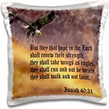 3dRose Isaiah 40-31 Bible verse with eagle against a troubled sky - Pillow Case, 16 by 16-inch (pc_27419_1)