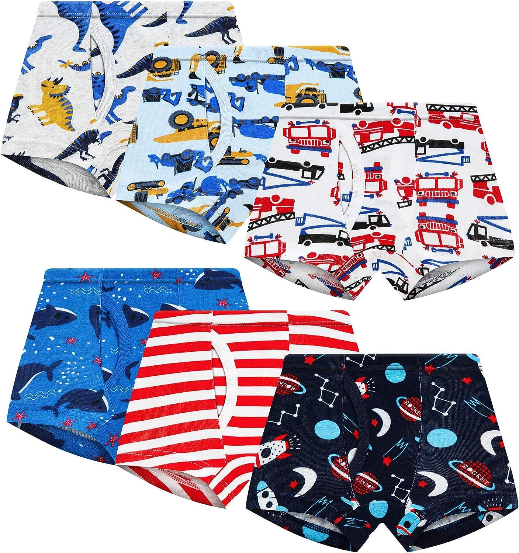Toddler Boxer Briefs Little Boys Underwear 100% Cotton Truck Dinosaur Comfort 6 Pack