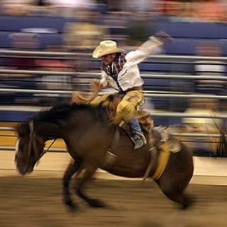 Rodeo News