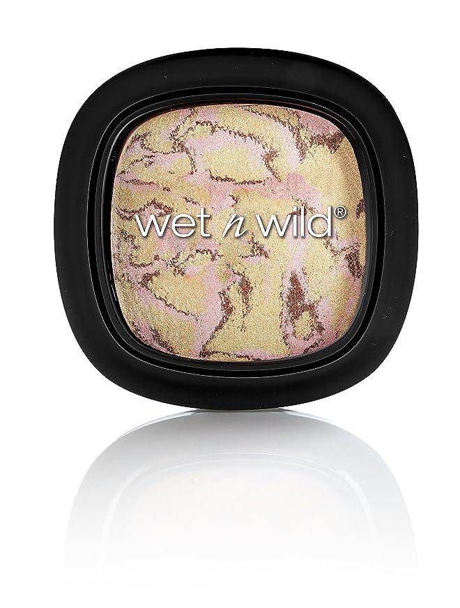 外観集中顕微鏡WET N WILD To Reflect Shimmer Palette - Boozy Brunch (並行輸入品)