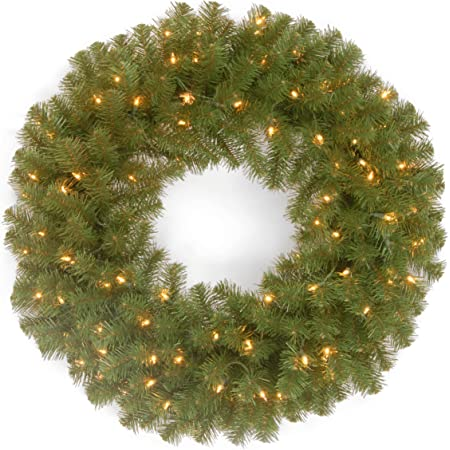 National Tree 24 Inch Norwood Fir Wreath With 50 Battery Operated Dual Led Lights Nf 304d 24wb 1 Home Kitchen