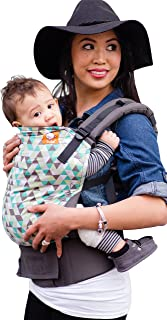Tula Ergonomic Carrier - Equilateral - Toddler