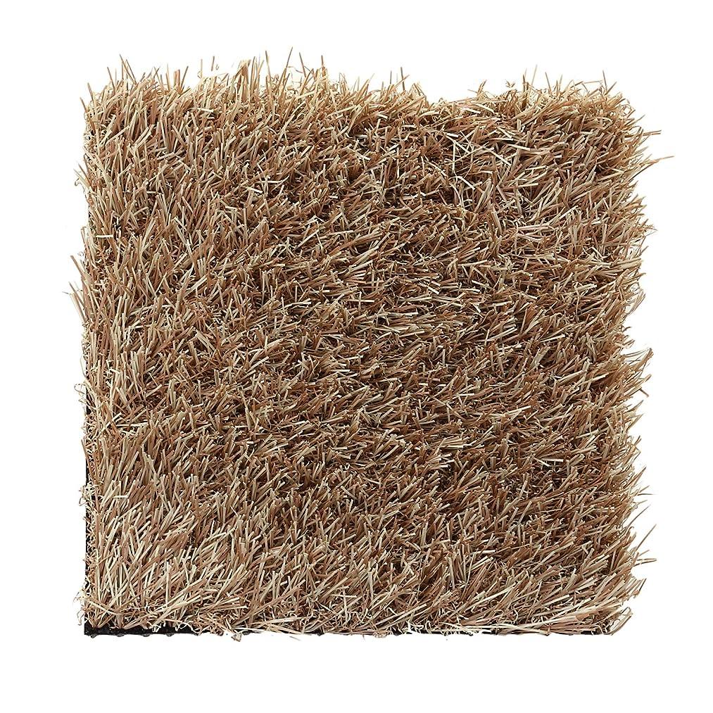 アリ余剰グラディスカラー人工芝スクエアマット 芝葉色:ラテブラウン(芝丈30mm) / 20cm角(2枚1セット)
