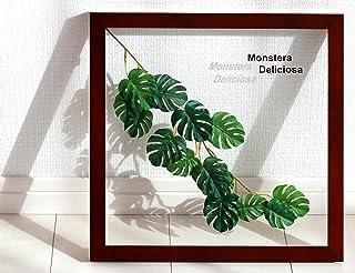 リーフパネル モンステラ デリシオサ3 絵画 インテリア 壁掛け 額入り リーフパネル アートパネル リビング 玄関 プレゼント モダン アートフレーム おしゃれ