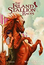 The Island Stallion Races (Black Stallion)