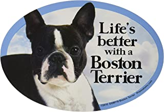 Prismatix Decal Cat and Dog Magnets, Boston Terrier