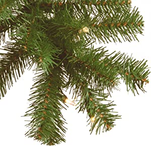 National tree 9 Foot by 10 Inch North Valley Spruce Garland with 50 Battery Operated Dual Color LED Lights (NRV7-302LD-9AB1)
