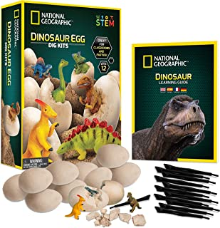 Best dino dig party Reviews