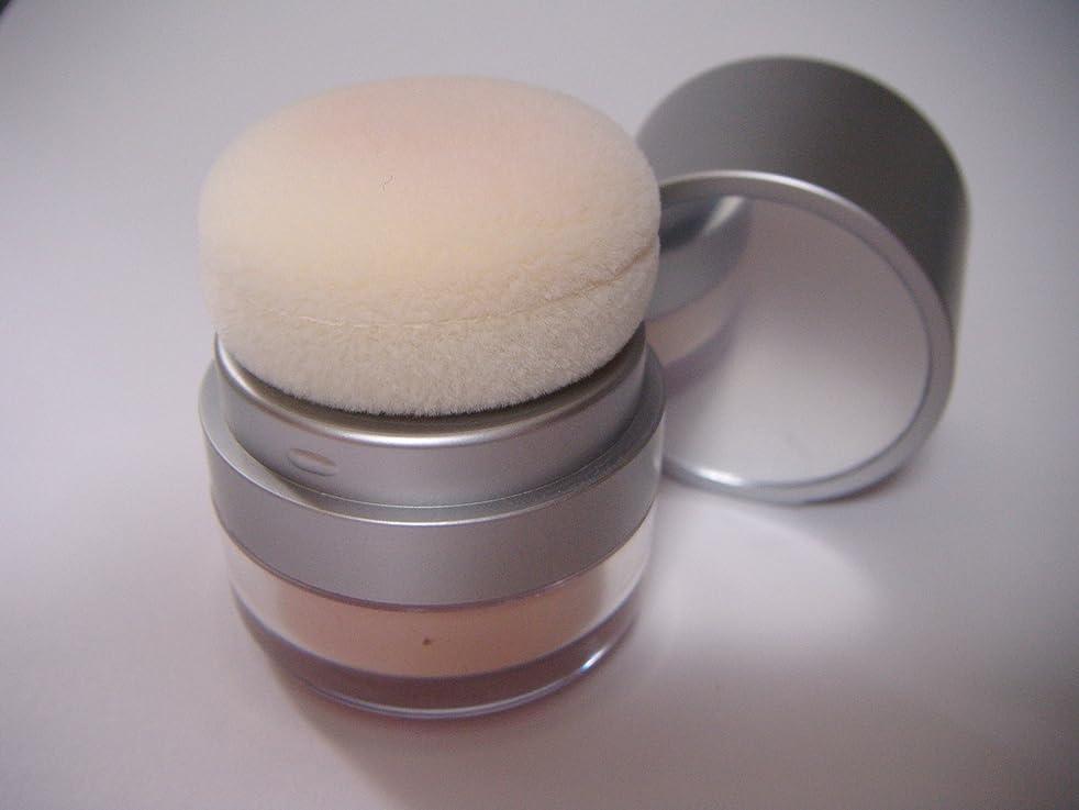 露骨な振り子請求可能UVプルーフブリリアントルースパウダー(8g)