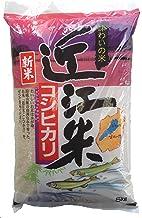 【精米】滋賀県産 白米 「近江米コシヒカリ」5kg 令和元年産