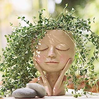 AIMEBBY صورت گلدان گلدان گلدان گلدان گیاهان شاداب گلدان کاکتوس رزین چشم بسته سوراخ زهکشی