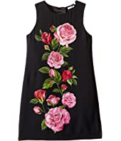 Dolce & Gabbana Kids - Rose Cadi Sleeveless Dress (Big Kids)