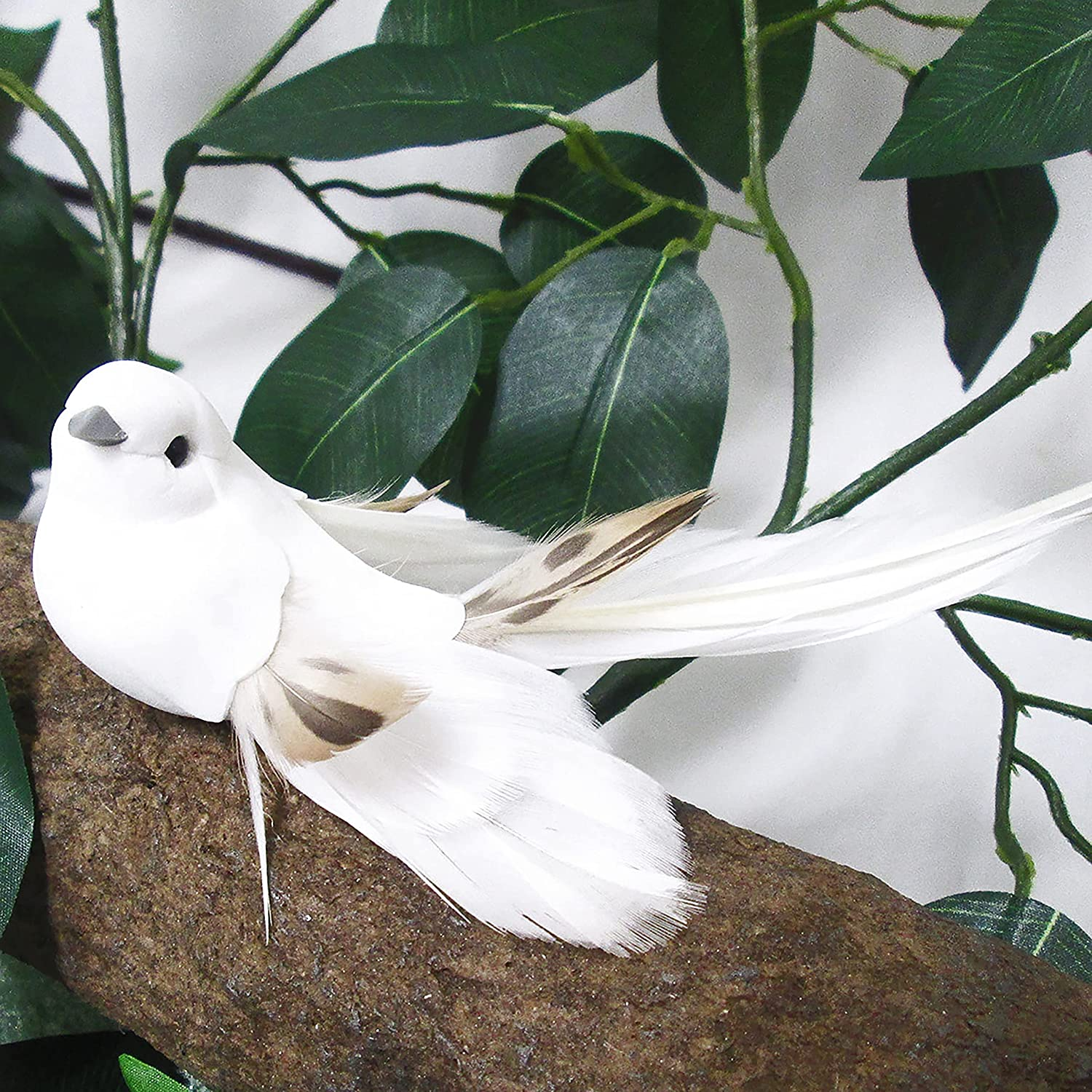 Unknown1 Set Max 56% OFF of 8 Artificial Long Accent Tail Bird Feather Foam Mail order cheap