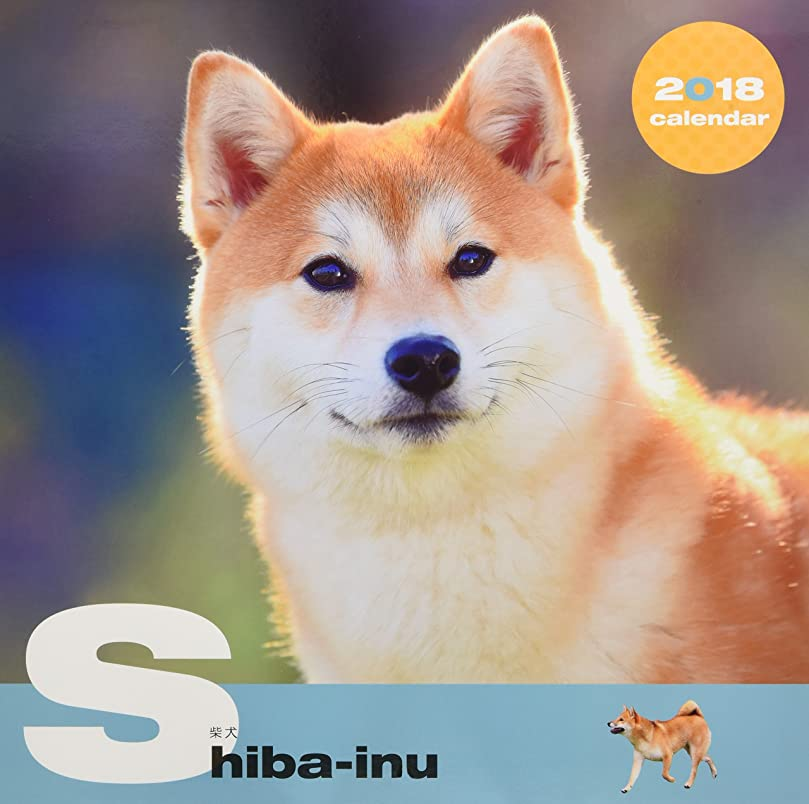 ホールドオール場所三番犬種別大判カレンダー 柴犬2018(壁掛け) ([カレンダー])
