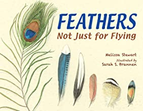 the blue feather book