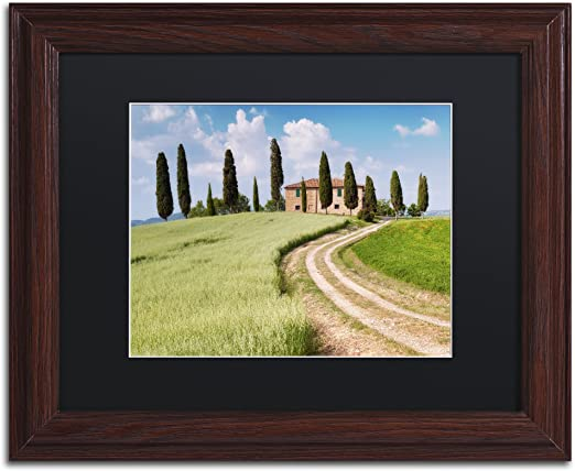 Tuscan Classic By Michael Blanchette Photography Artwork In Black Matte With Wood Frame 16 X 20 Home Kitchen Amazon Com