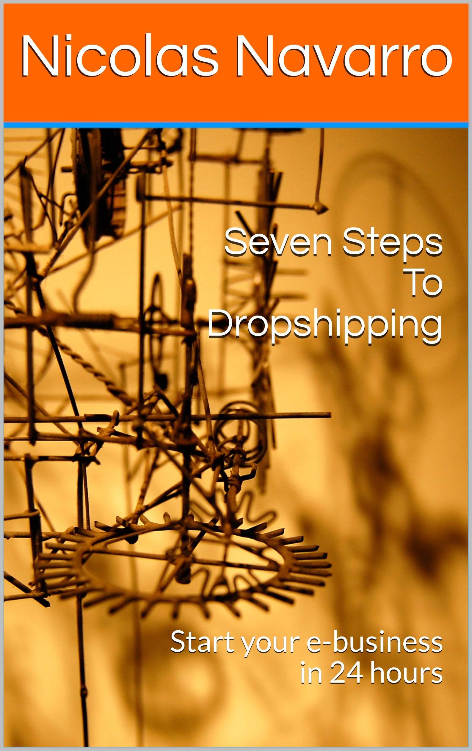 Seven Steps To Dropshipping : Start your e-business in 24 hours