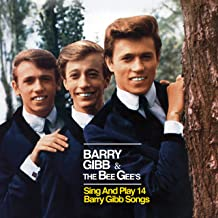 The Bee Gee's Sing & Play 14 Barry Gibb Songs