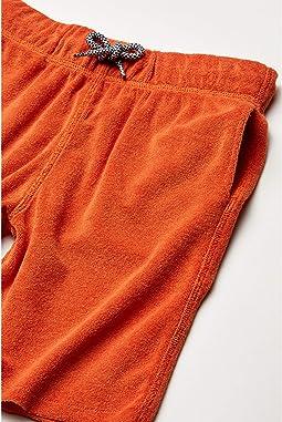 Burnt Orange
