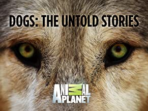 Dogs The Untold Story Season 1