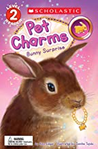 Bunny Surprise (Scholastic Reader, Level 2: Pet Charms #2)