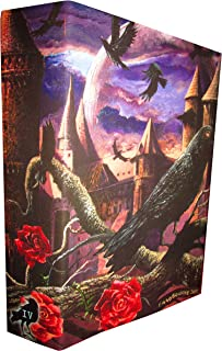 STEPHEN KING NEW COVER SERIES No. 24 Wizard in Glass (Artist Signed, Cover only)
