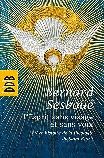 L'Esprit sans visage et sans voix: Brève histoire de la théologie du Saint-Esprit (French Edition)