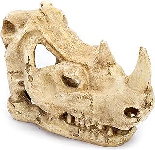 Penn Plax Rhino Skull Aquarium Ornament