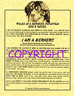 Rules in A Bernese Mountain Dog's House