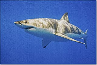 Best great white shark puzzle Reviews