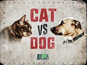 Cat vs. Dog Season 1
