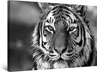 STARTONIGHT Canvas Wall Art Black and White Abstract Wise Tiger, Framed Wall Art 32 x 48 Inches