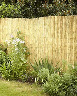 Lewis Hyman Garden Path 0406166 Natural Polishe and Peeled Reed Fencing 16' Long by 6' High