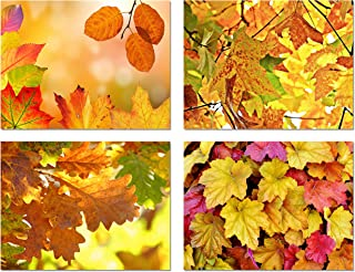 Fall Leaves Blank Note Cards - 24 Pack - Greeting Cards with Envelopes - 4 Unique Designs - 5.5