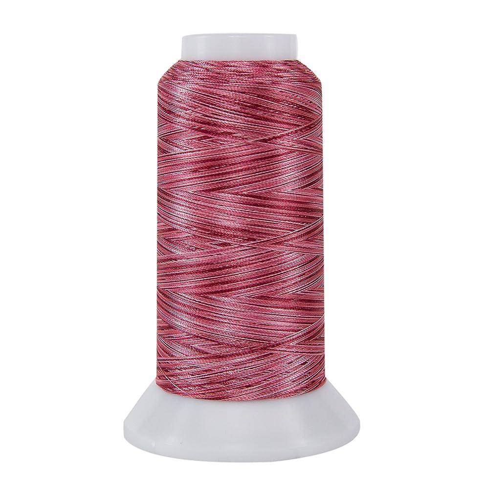 Superior Threads 11002-859 Rainbows Strawberry 40W Polyester Thread, 2000 yd hgjmohxci0